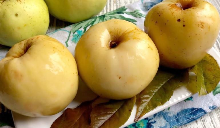 моченые яблоки в банках