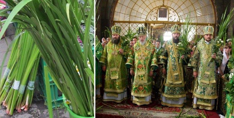 литургия на троицу